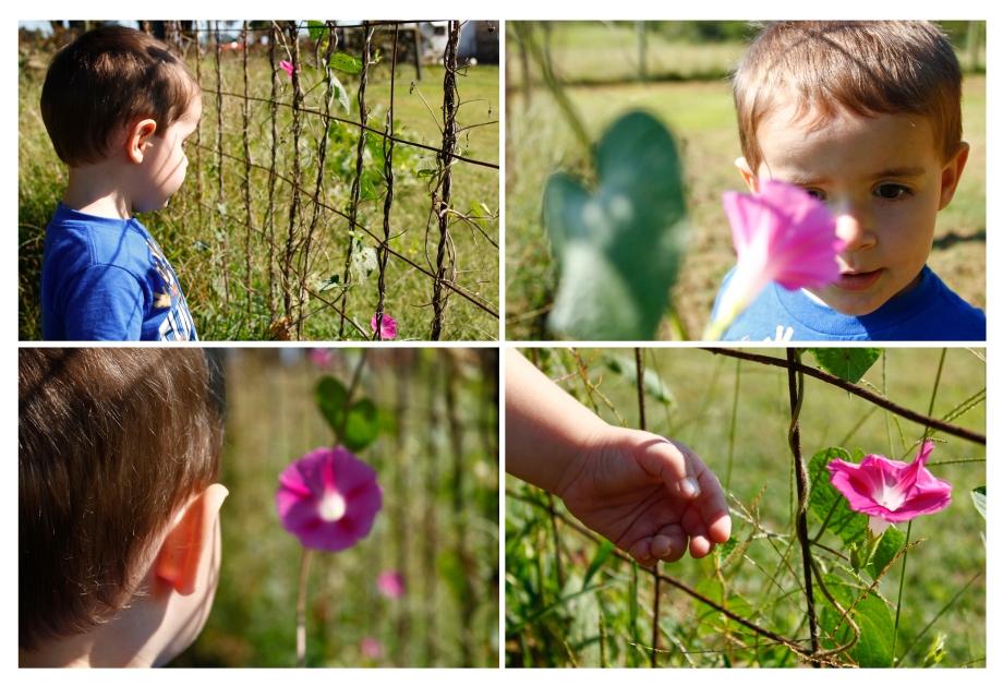 A Flower Child_1